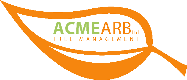 ACMEarb Ltd