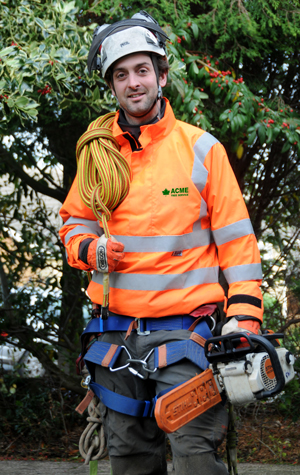 Acme Tree Surgery Sheffield - for all your pruning, cutting, felling, clearing tree work
